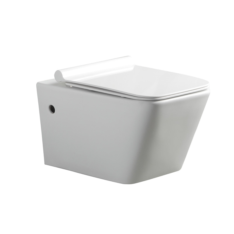 White ceramic one-piece wall-hung toilet WT805-1